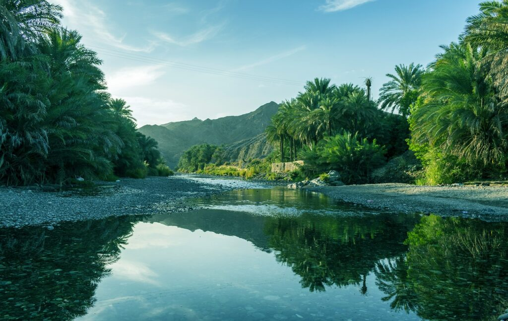How To Travel Within Oman